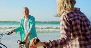Активное старшее кавказское положение пар с велосипедом на пляже 4k видеоматериал