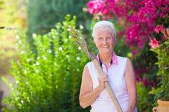 Активное retierment, приспосабливать старший садовничать Стоковые Фотографии RF