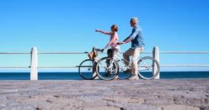 Активные старшии идя на велосипед едут морем видеоматериал