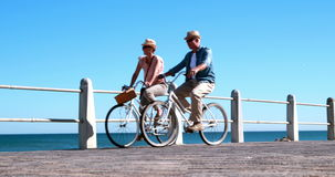 Активные старшии идя на велосипед едут морем сток-видео