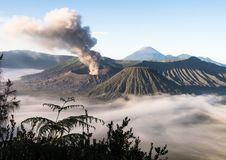 Активный держатель Bromo - Ява, Индонезия Стоковые Фото