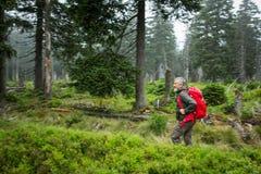 активный максимум hiking горы старшие Стоковые Фото