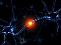 Активный неврон бесплатная иллюстрация