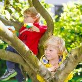 2 активных мальчика маленького ребенка наслаждаясь взбираться дальше Стоковая Фотография