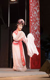 Актриса второго плана, тишины тайваньской оперы jinyuliangyuan стоковое фото rf