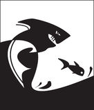 акула рыб Стоковое Изображение