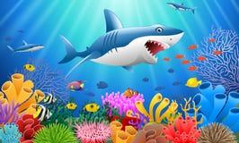 Акула шаржа с кораллом стоковое изображение rf