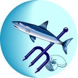 акула Стоковые Фотографии RF