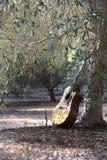 Акустическая гитара стоит около дерева с запачканной предпосылкой Стоковая Фотография RF