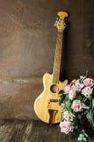 акустическая гитара Стоковая Фотография RF