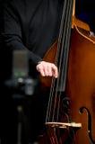 акустический басовый двойной игрок Стоковая Фотография
