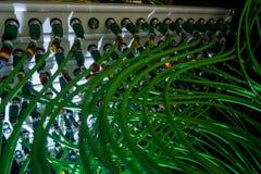 Акустический тональнозвуковой кабель аудио зеленого цвета сервера кабеля Много акустических кабелей Коаксиальный кабель для серве Стоковые Изображения RF
