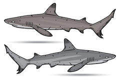 2 акулы шаржа изолированной на белой предпосылке Стоковые Изображения