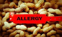 Аллергия арахиса Стоковое Изображение