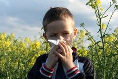 аллергия Стоковое фото RF