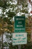 аллигаторы beware Стоковые Изображения