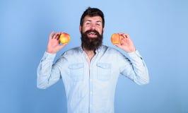 алтернатива здоровая Усмехаться человека бородатый держит яблока в предпосылке сини рук Яблоки в альтернативе обеих рук здоровой Стоковое Изображение RF
