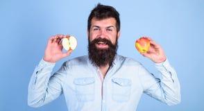алтернатива здоровая Яблоки в альтернативе обеих рук здоровой Усмехаться человека бородатый держит яблока в предпосылке сини рук Стоковые Фотографии RF