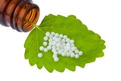 алтернатива как микстура homeopathy глобул стоковая фотография rf