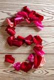 алфавита лепестков розы стоковые фотографии rf