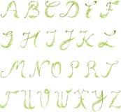 алфавит относящий к окружающей среде Стоковая Фотография