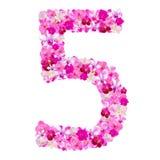 Алфавит 5 от цветков орхидеи изолированных на белизне Стоковые Фотографии RF
