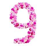 Алфавит 9 от цветков орхидеи изолированных на белизне Стоковые Изображения RF