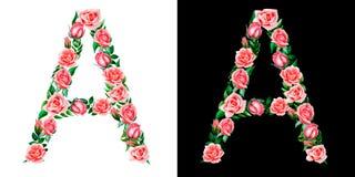 Алфавит роз, вензель акварели флористический, прописная буква a изолированный на черно-белой предпосылке иллюстрация штока