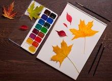 Альбом, краски акварели, щетки и листья осени стоковое фото