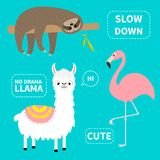 Альпака, фламинго, набор лени Отсутствие ламы драмы Камеры скорости в деятельности Характер kawaii милого шаржа смешной Ребяческо бесплатная иллюстрация