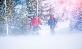 2 альпиниста во время вьюги Стоковое фото RF