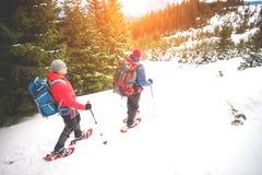 2 альпиниста в горах в зиме Стоковые Изображения RF