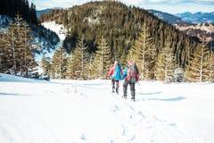 2 альпиниста в горах Стоковые Фото