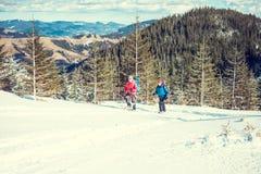 2 альпиниста в горах Стоковые Изображения RF