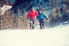 2 альпиниста в горах Стоковая Фотография