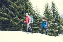 2 альпиниста в зиме Стоковые Изображения