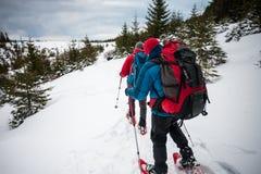 2 альпиниста в зиме Стоковое Фото