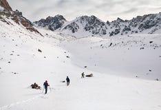 Альпинисты в горах стоковые фото