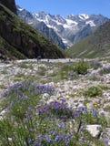 Альпинисты в Кавказе Стоковая Фотография