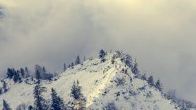 Альпинисты на снежной верхней части горы Стоковое Фото