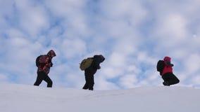 Альпинисты объединяются в команду в зиме для того чтобы пойти к верхней части горы Путешественники следовать одним другое вдоль с видеоматериал
