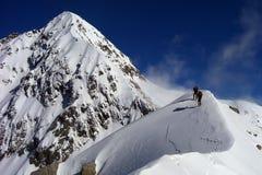 альпинисты Стоковое Изображение