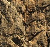 Альпинист утеса отдыхая во время трудного подъема Стоковая Фотография