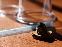 Альтернативные терапии Moxibustion01 стоковые фотографии rf