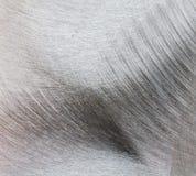 алюминиевое поцарапанное металлопластинчатое Стоковая Фотография