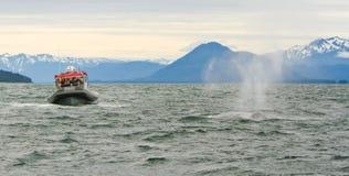 Аляска - кит Humpback 2 маленькой лодки большой Стоковые Изображения RF