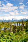 Аляска - озера и Mountians полуостров Kenai Стоковая Фотография RF