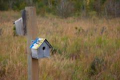 аляскская дом птицы Стоковое Фото