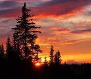 аляскский заход солнца Стоковое Изображение RF