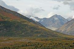 аляскский ландшафт Стоковые Фото